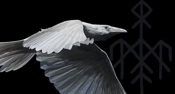 Wardruna: First Flight of The White Raven